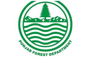 Forest and Wildlife Protection Department